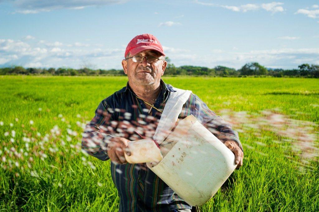 rolnik w trakcie pracy